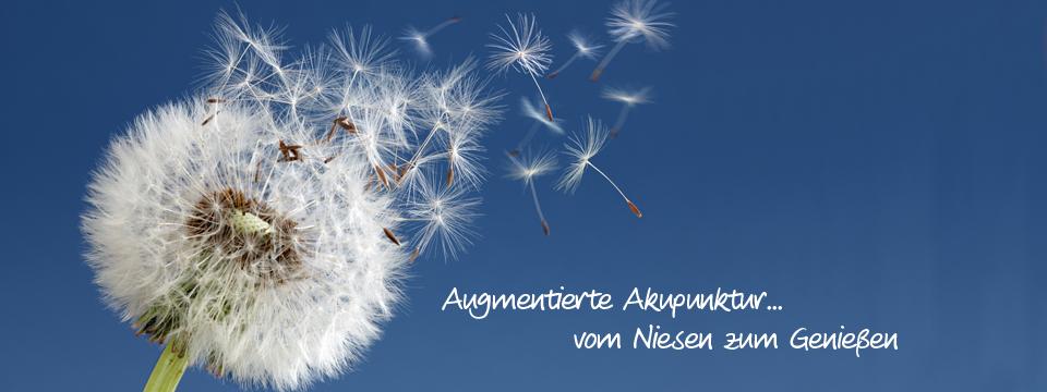 Augmentierte Akupunktur